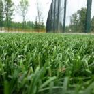 Po konserwacji sztucznej trawy